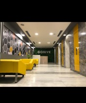 Gohive Sector 38